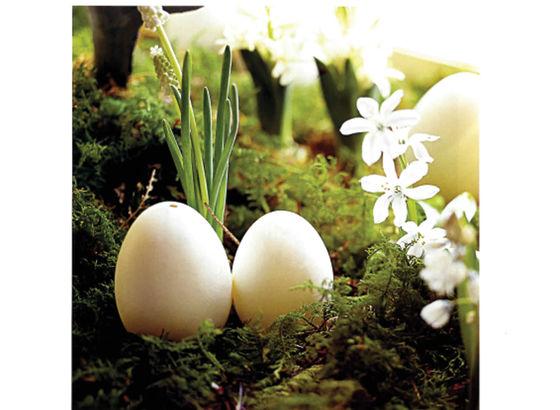 Dettaglio tavolo per Pasqua